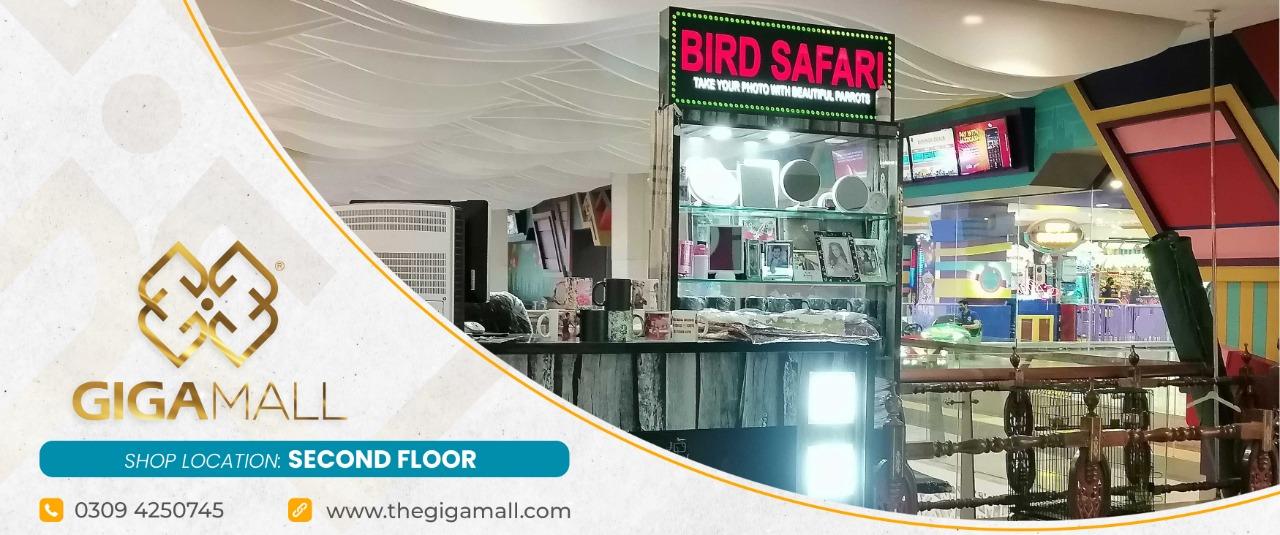 Bird Safari